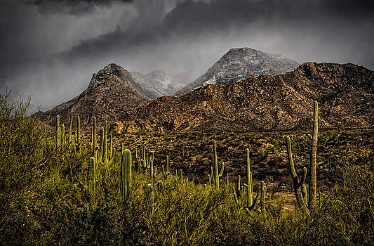 Storm Over Catalinas 15 by Mark Myhaver