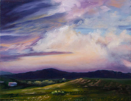 Storm by Patricia Reed