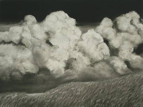 Storm Rising over Kansas Wheat Field by Mary Erbert