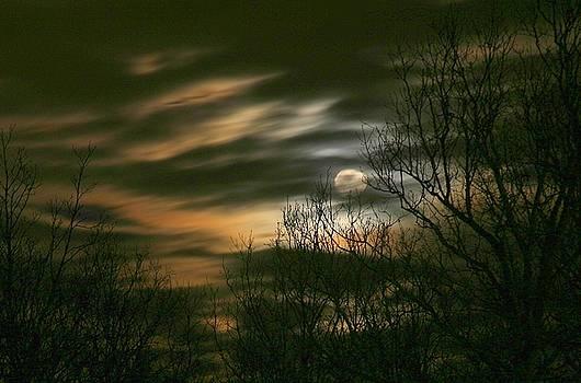 Storm Rollin' In by J R Seymour