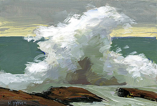 Storm Swept II  by Mary Byrom