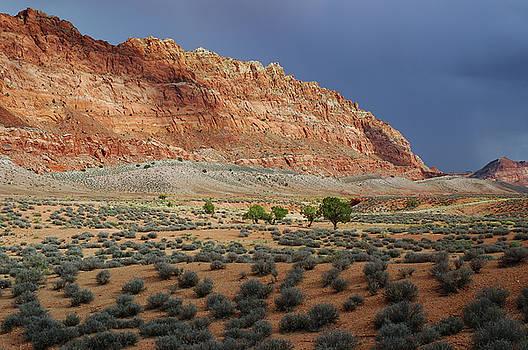 Reimar Gaertner - Storm threat in the desert at Echo cliffs