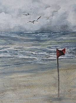Storm Warning by Anne Buffington