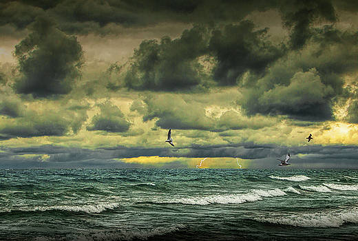 Randall Nyhof - Storm with lightning with gulls flying amid waves crashing on the shore