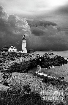 Skip Willits - STORMS OVER THE HEAD BNW