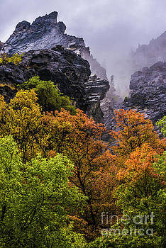 Stormy American Fork Canyon - Wasatch - Utah by Gary Whitton