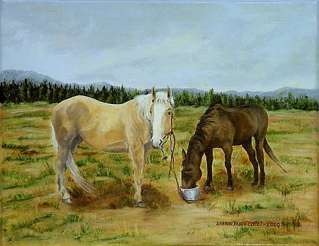 Stormy and Friend on the Ranch by Sharon Tabor