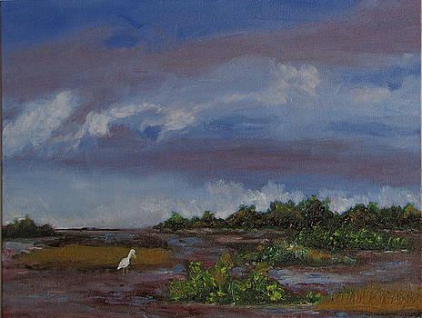 Stormy Bayou by Libby  Cagle