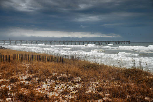 Stormy Day at the Pier by Renee Hardison