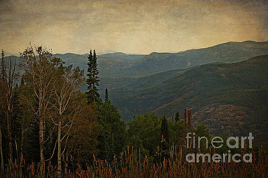 Stormy Day in the Mountains by Lisa Holmgreen