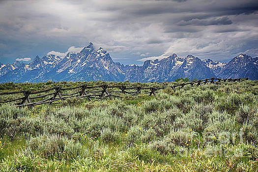Teresa Zieba - Stormy Grand Tetons and a Fence