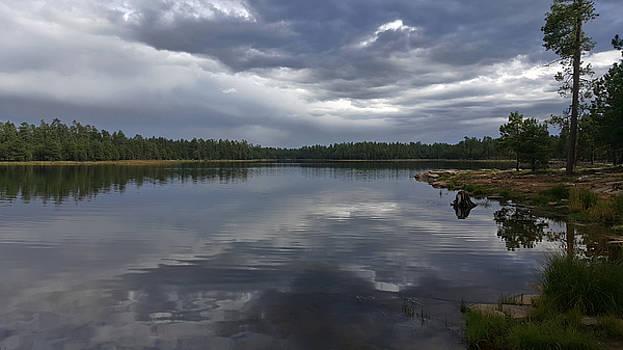 Stormy Lake by LeeAnn Nix