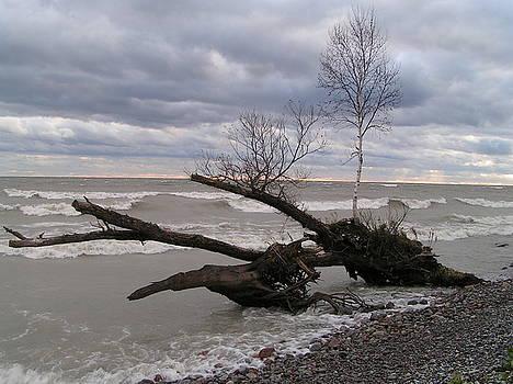 Stormy Lake Ontario Sunset by Paul Hurtubise