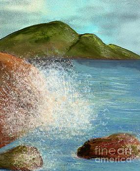 Stormy Little Cove by Nan Engen
