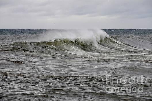 Stormy October Waves by Sandra Updyke