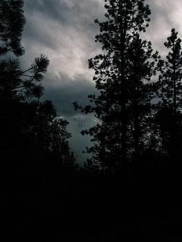 Stormy Skies  by Jen Lynn Arnold