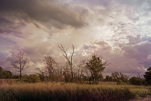 Stormy Skies over Indiana Dunes by John M Bailey