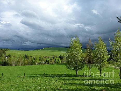 Stormy Sky by Nicole O'Connor