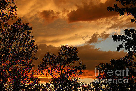 Stormy Sunset by Marilyn Carlyle Greiner