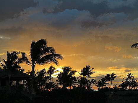Stormy Sunset by Vidyut Singhal
