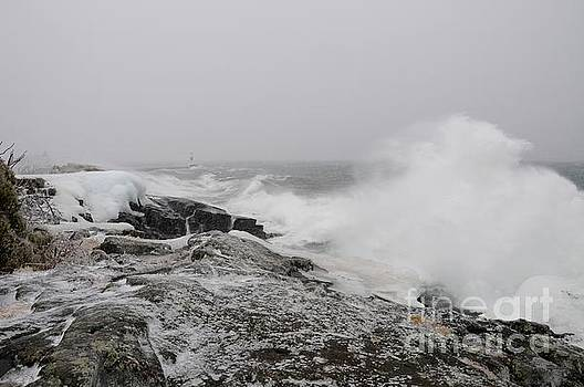 Stormy Superior Day by Sandra Updyke