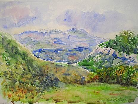 Stormy Valley at Wilder-Nest by Corynne Hilbert