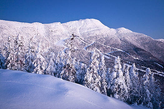 Stowe #2 by Dave Schmidt