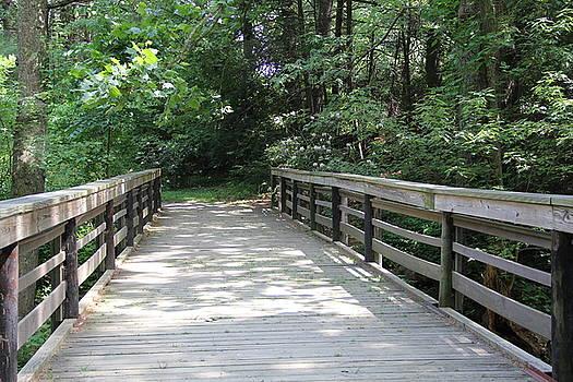 Allen Nice-Webb - Straight Bridge