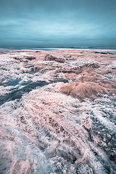 Stranded on Gamma Leonis by Alexander Kunz