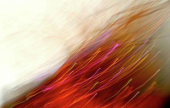 Strange Apparition by Karen Tullo