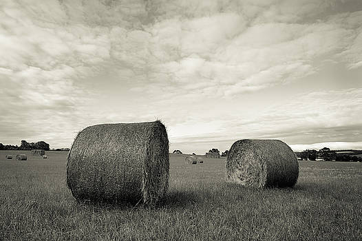 Straw Bales by Wendy Chapman