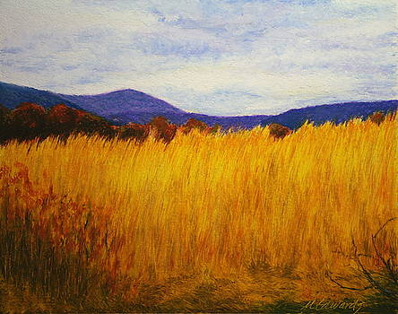 Straw Field by Marna Edwards Flavell