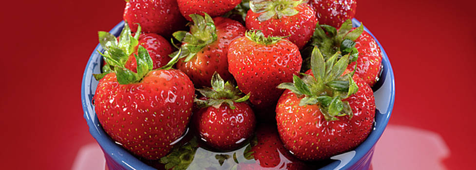 Strawberries in a Bowl by Steve Gadomski