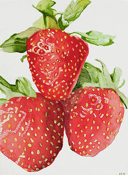 Strawberries by Marcella Morse