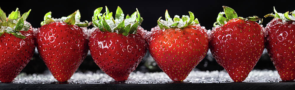 Strawberries Panorama by Steve Gadomski