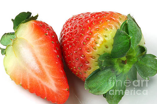 Strawberry by Elke Rampfl-Platte
