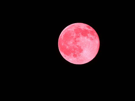Strawberry Flavored Moon by Nicole Zanier