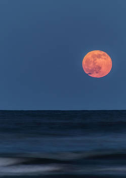 Strawberry Moon a Little Higher by Bonnie Davidson