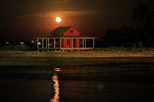 Strawberry Moon by Catie Canetti