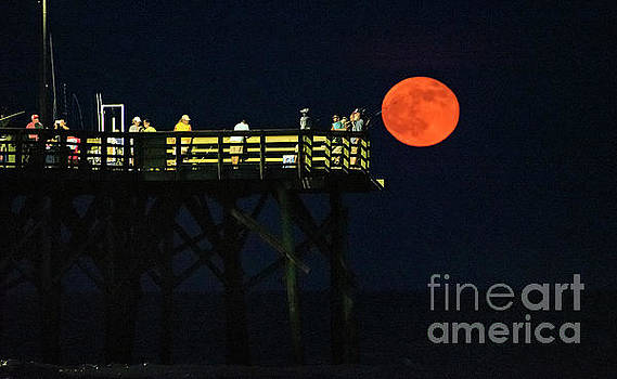 Strawberry Moon by DJA Images