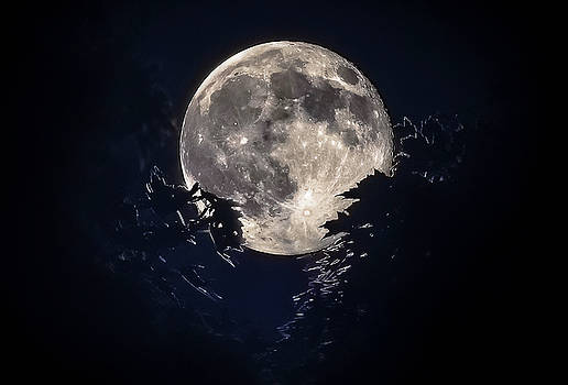 Strawberry Moon by Garett Gabriel
