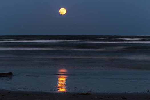 Strawberry Moon Reflection by Bonnie Davidson