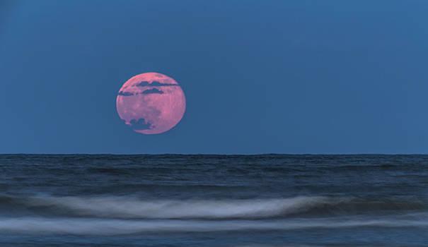Bonnie Davidson - Strawberry Moon Rising