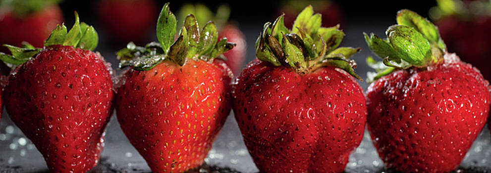 Strawberry Panorama by Steve Gadomski