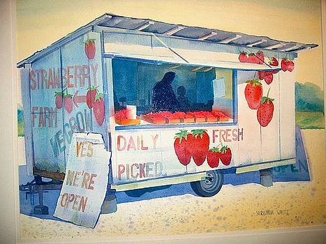 Strawberry Stand by Virginia White