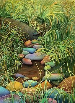 Stream by Anne Havard