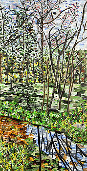 Stream at Ligon Mill Road by Micah Mullen