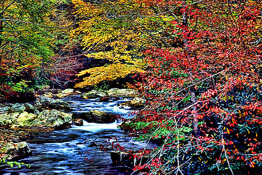 Kevin  Sherf - Stream in Autumn