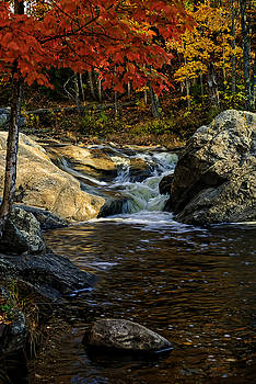 Stream In Autumn No.17 by Mark Myhaver