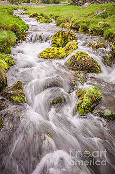 Mariusz Talarek - Stream